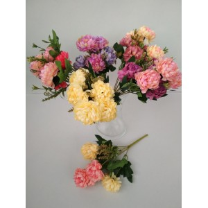 Хризантема прованс