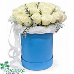 Цветы в коробках №133