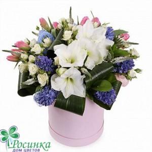 Цветы в коробках №525