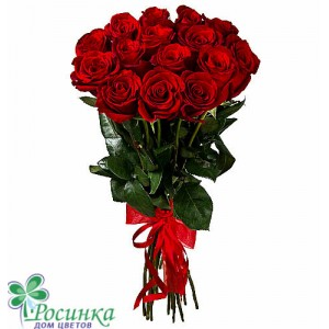 15 Красных Роз 70см №98