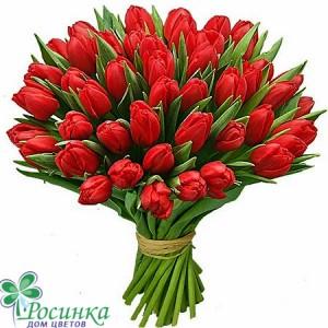 Букет №157 - 51 Тюльпана