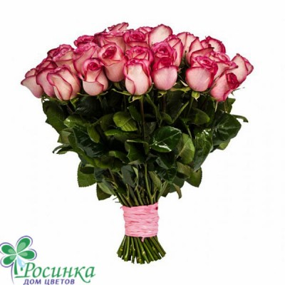 Букет из 25 роз №406