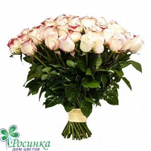 Букет из 25 роз №248