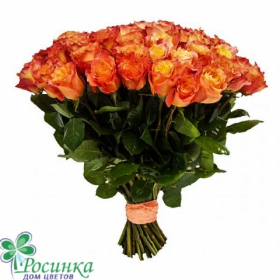 Букет из 25 роз №249