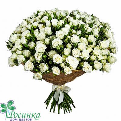 Букет из белых кустовых роз №606