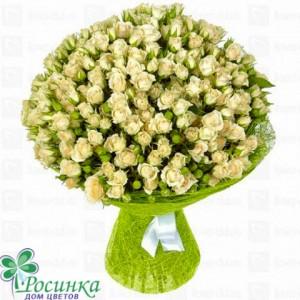 Букет из 51 кустовой розы №242