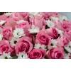 Розы Кения в Коробке