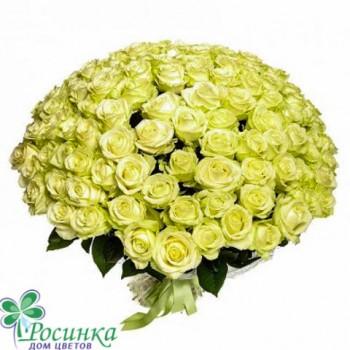 """101 Роза  """"Белоснежка"""" Букет №18"""