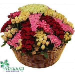 """Композиция """"Звездный цветок счастья """" (801 роза)"""