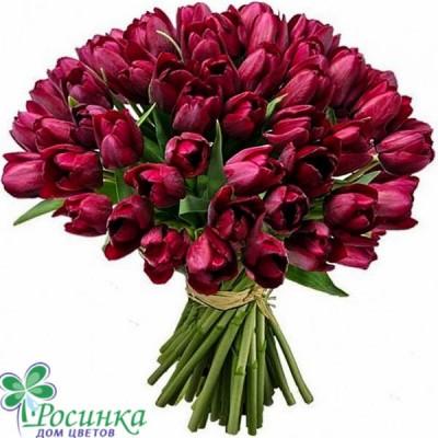Букет  49 Тюльпанов