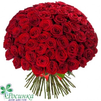 """Букет из 101 розы """"Глубокие Чувства"""""""