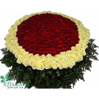 """Композиция """"Море цветов"""" (301 роза)"""