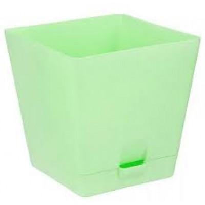 LP квадрат с под.2л.(зеленый)