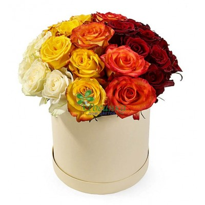 №756 Розы 23 шт