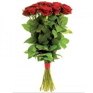 Розы 1.5 метра 19 шт