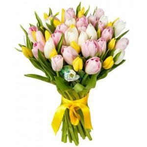 Тюльпаны 39 шт