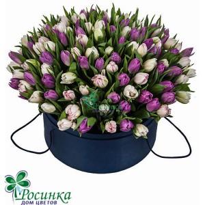 131 тюльпан в шляпной коробке