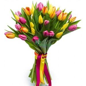 Тюльпаны 33 шт