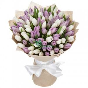 65 Тюльпанов