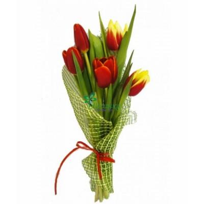 Букет из 5 тюльпанов